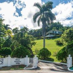 Отель Blue Heaven by Jamaican Treasures фото 2