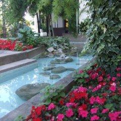Отель Stella Италия, Риччоне - отзывы, цены и фото номеров - забронировать отель Stella онлайн бассейн