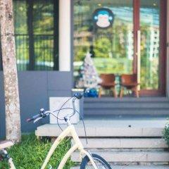 Отель Blu Monkey Bed & Breakfast Phuket интерьер отеля фото 4