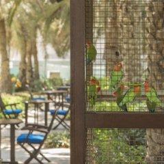 Отель Coral Beach Resort - Sharjah балкон