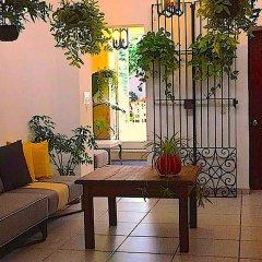 Отель Casa Canario Bed & Breakfast фото 16