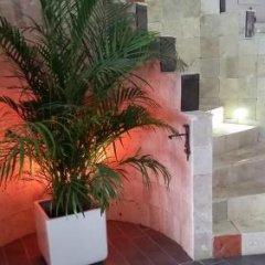 Urla Yelken Hotel Турция, Урла - отзывы, цены и фото номеров - забронировать отель Urla Yelken Hotel - Adults Only онлайн фото 11