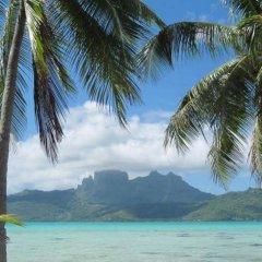 Отель Pension Alice et Raphael Bora-Bora Французская Полинезия, Бора-Бора - отзывы, цены и фото номеров - забронировать отель Pension Alice et Raphael Bora-Bora онлайн пляж фото 2