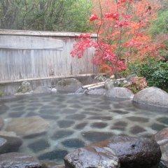 Отель Hozenji Onsen Ryokan Ebitei Минамиогуни бассейн
