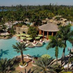 Seminole Hard Rock Hotel and Casino бассейн