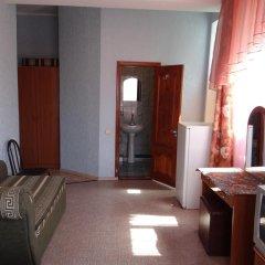 Гостиница Alina в Анапе отзывы, цены и фото номеров - забронировать гостиницу Alina онлайн Анапа удобства в номере фото 2