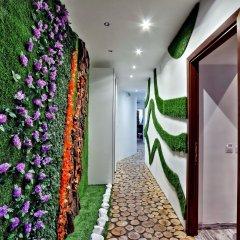 Отель Suite Paradise интерьер отеля фото 3