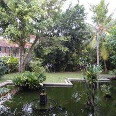 Отель Aida Шри-Ланка, Бентота - отзывы, цены и фото номеров - забронировать отель Aida онлайн фото 7