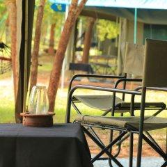 Отель Big Game Camp Yala Шри-Ланка, Катарагама - отзывы, цены и фото номеров - забронировать отель Big Game Camp Yala онлайн балкон