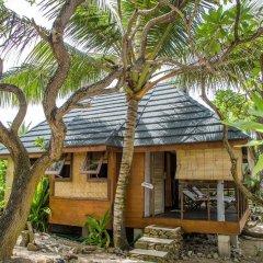 Отель Green Lodge Moorea Французская Полинезия, Папеэте - отзывы, цены и фото номеров - забронировать отель Green Lodge Moorea онлайн фото 12