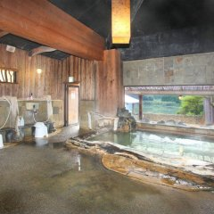 Arden Hotel Aso Минамиогуни бассейн фото 2
