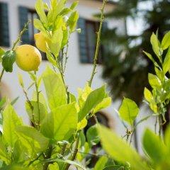 Отель Residence Le Bugne Италия, Ноале - отзывы, цены и фото номеров - забронировать отель Residence Le Bugne онлайн фото 5