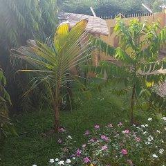Отель Aparthotel Jardin Tropical
