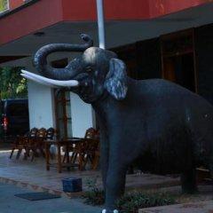 Отель Cinnamon Bey Шри-Ланка, Берувела - 1 отзыв об отеле, цены и фото номеров - забронировать отель Cinnamon Bey онлайн фото 6