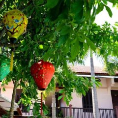 Отель Hoi An Garden Villas фото 6