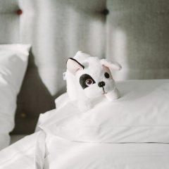 Отель PURO Poznan Stare Miasto Польша, Познань - отзывы, цены и фото номеров - забронировать отель PURO Poznan Stare Miasto онлайн с домашними животными