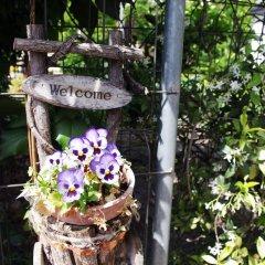 Отель B&B Pompei Welcome Италия, Помпеи - отзывы, цены и фото номеров - забронировать отель B&B Pompei Welcome онлайн фото 8