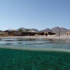 Отель Sahara Beach Camp фото 2