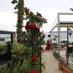 Отель Beachwood Villas фото 16