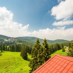 Отель Snezhanka Болгария, Пампорово - отзывы, цены и фото номеров - забронировать отель Snezhanka онлайн фото 6