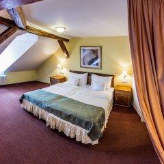 Hotel Dvorak Cesky Krumlov Чешский Крумлов удобства в номере фото 2
