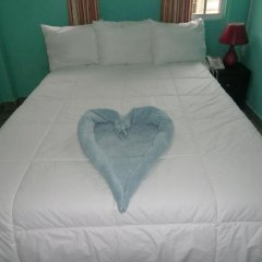 Отель Princess Raven Гайана, Джорджтаун - отзывы, цены и фото номеров - забронировать отель Princess Raven онлайн комната для гостей фото 2