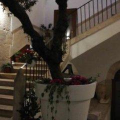 Отель Il Nido dei Falchi B&B Альтамура фото 7