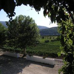 Отель The Wine House Hotel - Quinta da Pacheca Португалия, Ламего - отзывы, цены и фото номеров - забронировать отель The Wine House Hotel - Quinta da Pacheca онлайн фото 6