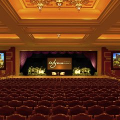 Отель Wynn Las Vegas развлечения