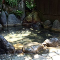 Отель Sujiyu Onsen Takaraya Ryokan <Oita> Япония, Минамиогуни - отзывы, цены и фото номеров - забронировать отель Sujiyu Onsen Takaraya Ryokan <Oita> онлайн фото 3