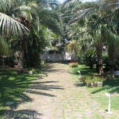Отель Cuore Di Palme Флорида фото 3