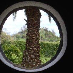 Отель Quinta de Santa Clara Португалия, Понта-Делгада - отзывы, цены и фото номеров - забронировать отель Quinta de Santa Clara онлайн комната для гостей фото 2