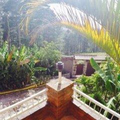 Отель Cabañas los Encinos Гондурас, Тегусигальпа - отзывы, цены и фото номеров - забронировать отель Cabañas los Encinos онлайн фото 7