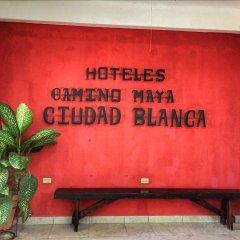 Отель Camino Maya Ciudad Blanca Гондурас, Копан-Руинас - отзывы, цены и фото номеров - забронировать отель Camino Maya Ciudad Blanca онлайн интерьер отеля