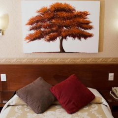 Отель Posada Regis Мексика, Гвадалахара - отзывы, цены и фото номеров - забронировать отель Posada Regis онлайн комната для гостей