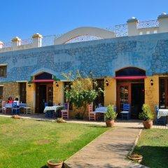 Отель Olive Farm Of Datca Guesthouse - Adults Only Датча фото 17