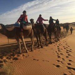 Отель Galaxy Desert Camp Merzouga Марокко, Мерзуга - отзывы, цены и фото номеров - забронировать отель Galaxy Desert Camp Merzouga онлайн приотельная территория