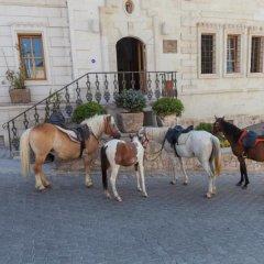 Exedra Cappadocia Турция, Ургуп - отзывы, цены и фото номеров - забронировать отель Exedra Cappadocia онлайн с домашними животными