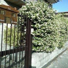 Отель B&B A Casa Di Nonna Италия, Фонди - отзывы, цены и фото номеров - забронировать отель B&B A Casa Di Nonna онлайн фото 7