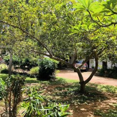 Отель Lagoon Paradise Шри-Ланка, Негомбо - отзывы, цены и фото номеров - забронировать отель Lagoon Paradise онлайн фото 18