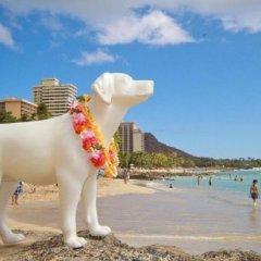 Stay Hotel Waikiki пляж фото 2