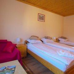 Отель Guest House Edelweiss Болгария, Боровец - отзывы, цены и фото номеров - забронировать отель Guest House Edelweiss онлайн фото 25
