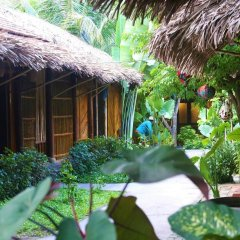 Отель Under the coconut tree фото 14