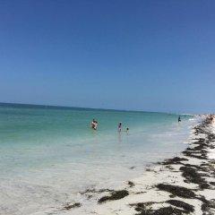 Отель Dolphin Beach Resort пляж