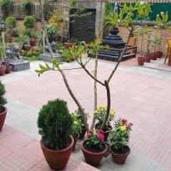 Отель Aarya Chaitya Inn Непал, Катманду - отзывы, цены и фото номеров - забронировать отель Aarya Chaitya Inn онлайн помещение для мероприятий