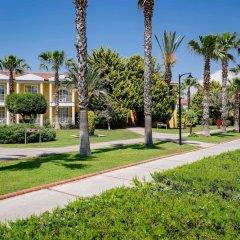Отель Euphoria Palm Beach Resort фото 10