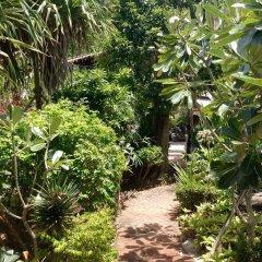Отель Living Chilled Koh Tao - Hostel Таиланд, Остров Тау - отзывы, цены и фото номеров - забронировать отель Living Chilled Koh Tao - Hostel онлайн фото 6
