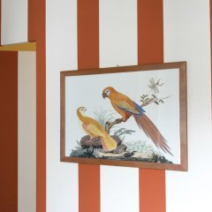 Отель B&B Bonaparte Suites интерьер отеля фото 2