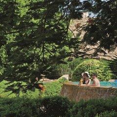 Отель Movenpick Resort & Spa Dead Sea с домашними животными