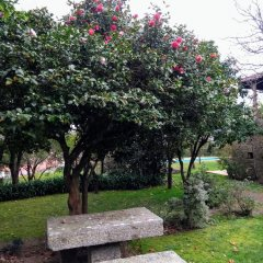 Отель Quinta do Sardão фото 22